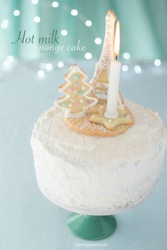 torta-al-latte-caldo-con-cacao-e-camy-cream-torta-decorata